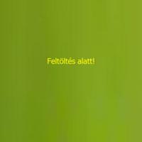 BIO Kék zöld afa alga tabletta leveles 60 db.