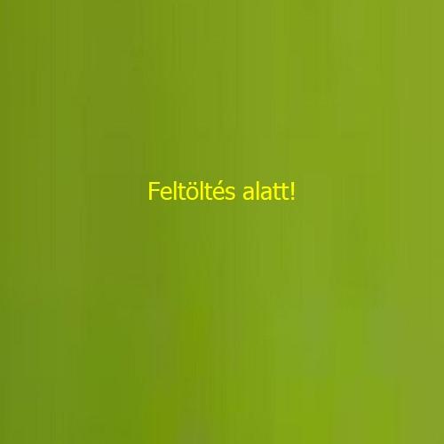 BIO Kék zöld afa alga tabletta üveges 150 db.